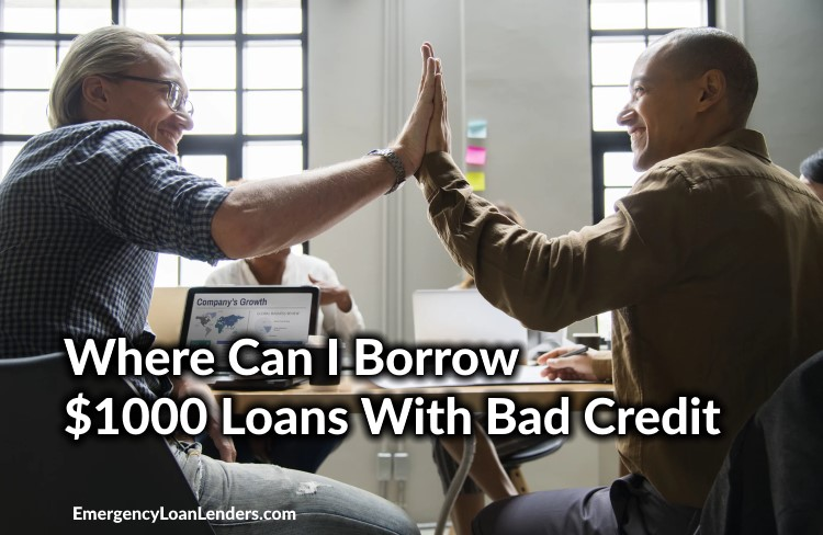 where can I borrow 1000 loans with bad credit